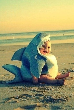 make him think he's a shark and he'll never be afraid to surf ;)