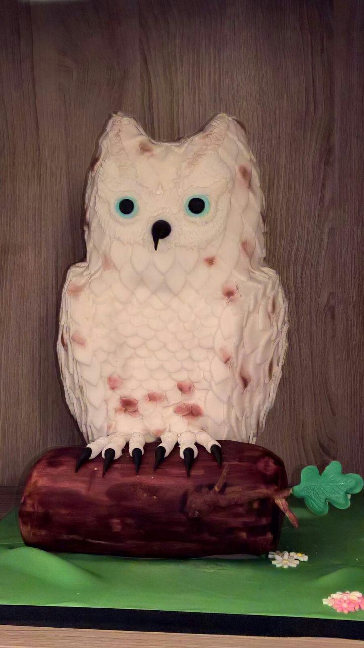 Owl made of Rice krispies and fondant. Uil gemaakt van Rice krispies en fondant.