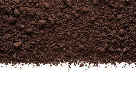 What Is Humus Soil? | DoItYourself.com