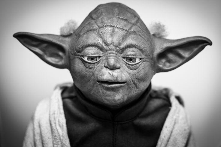 Master Yoda - Sorocaba, SP - Brazil. Star Wars. Mestre Yoda.