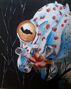 Tokay gecko by Judit Szalanczi