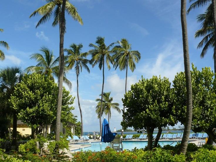 Tranquil Tropics in Nassau Bahamas