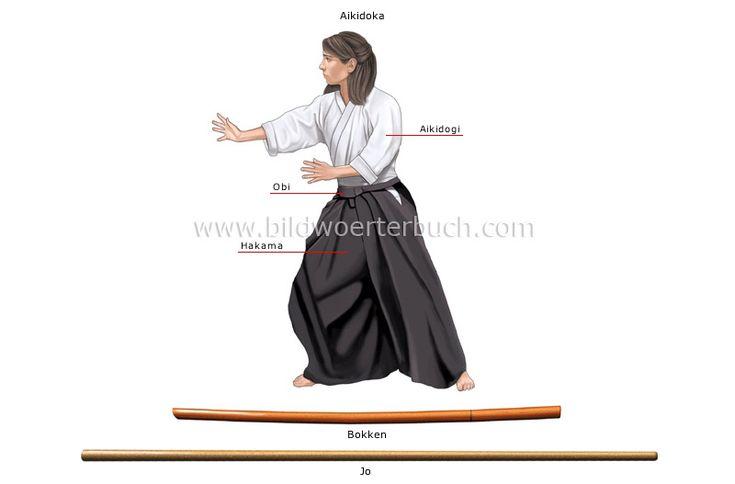 aikido, aikidoka, keikogi, obi, hakama, wooden weapon, bokken, jo