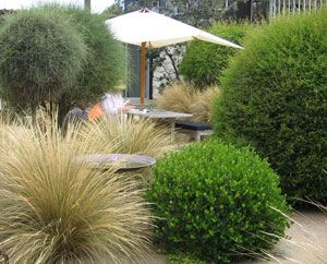 50 best Low Impact Development images on Pinterest Rain garden
