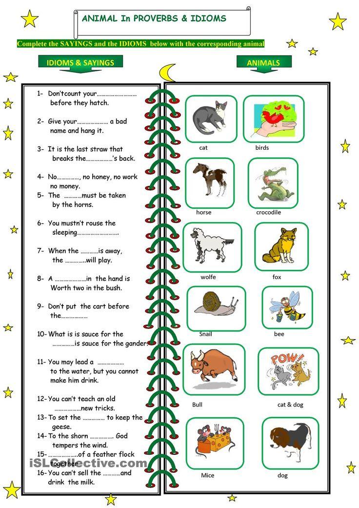 animals in idioms and proverbs