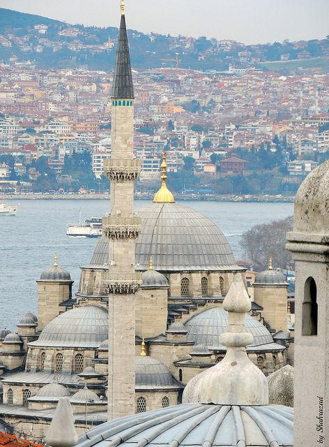 """My cruise ends in Istanbul: """"The pigeonmosque 