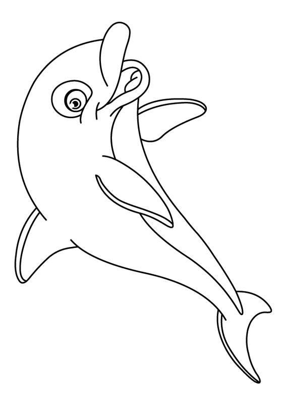 30 Disegni Di Delfini Da Colorare Psed Ims Disegni Delfini E