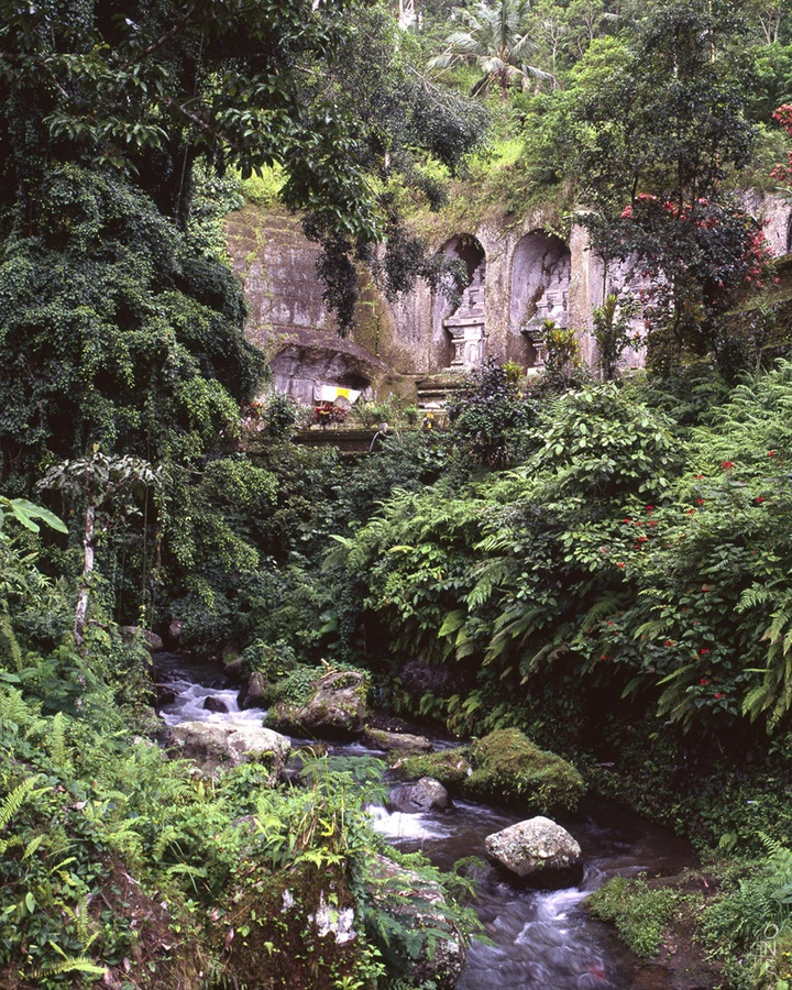nung adalah sebuah bentuk tanah yang menonjol di atas wilayah sekitarnya. Sebuah gunung biasanya lebih tinggi dan curam dari sebuah bukit, tetapi ada kesamaaan, dan penggunaan sering tergantung dari adat lokal.