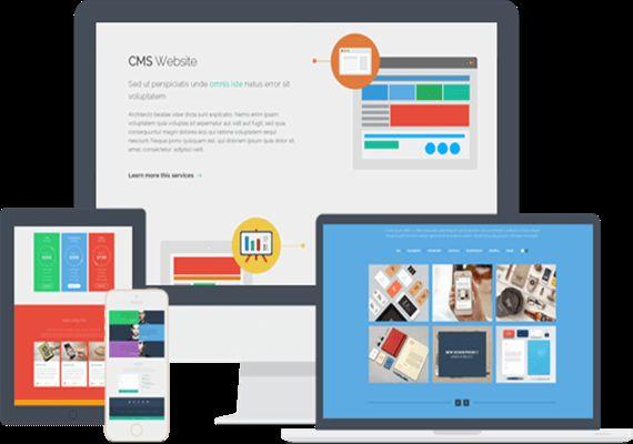 Yazılım geliştirme, Web & Otomasyon Yazılımları