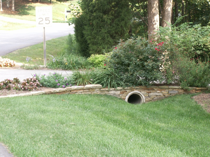 163 best images about drainage ideas on pinterest yard for Yard drainage options