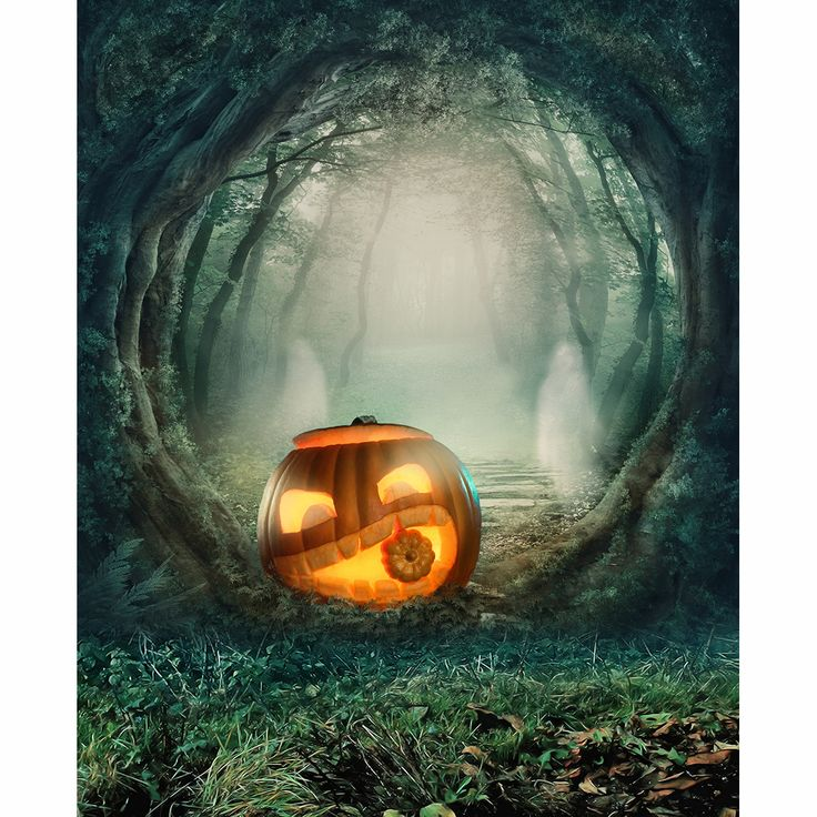 Allenjoy Bosque Sombrío Horror excluyendo soporte linterna de calabaza para la Celebración De Halloween fiesta infantil fantasía fotografía prop
