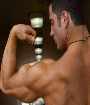 Quick ways to Build Muscle