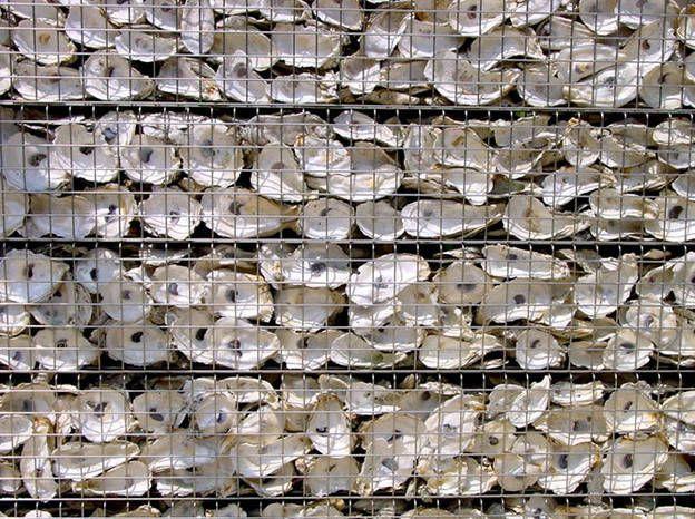 Les 25 meilleures id es de la cat gorie cages de gabions - Mur soutenement gabion ...