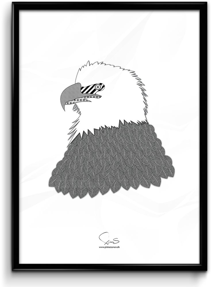 Eagle A2 42x59,40 Cm, kr299.00