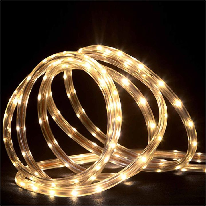 Asstd National Brand 288' Commercial Grade Warm White LED Indoor/Outdoor Rope Lights On A Spool