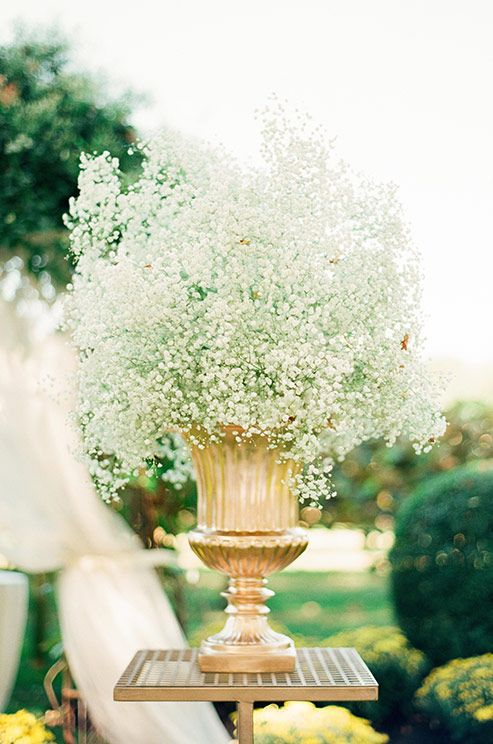 Best images about garden weddings on pinterest light