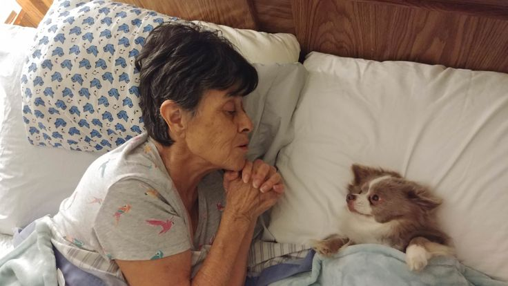 I posted awhile ago my mom with early dementia almost passed away from sepsis. She fought for over a month hospitalized and in rehab. I'm happy to report she's home and back with her companion... (i.imgur.com) submitted by thejohnblog to /r/pics 8 comments original   - Unique #Pictures from around the World and This Strange Internet - Uncensored #Creativity - #Funny and Clever Humor - Weird LOL #Jokes - Embarrassing ROFL Humor - Images of Amateur #Photographers from Everywhere Around the…