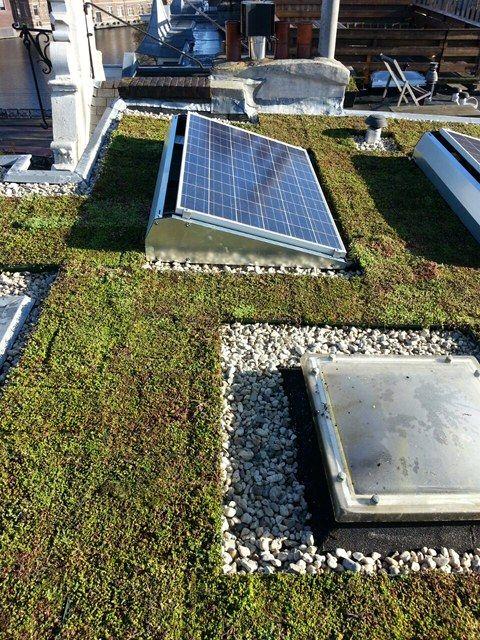 Zonnepanelen renderen beter op een sedumdak leverde en installeerde alles onder - Mezzanine onder het dak ...