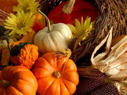 history of thanksgiving food in all countries too.