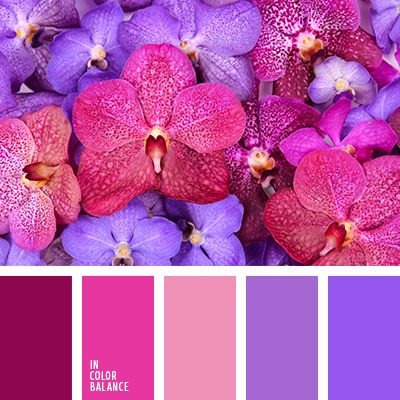 bright color palettes on pinterest bright color schemes bright