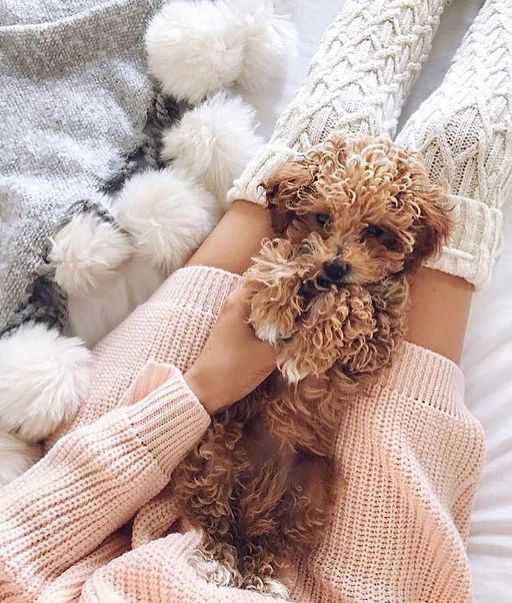 Lazy Sundays via @stylefriques