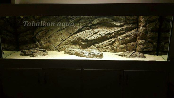 Akvaryum fon tabalkon aqua Gercekci ve dogal akvaryumlar