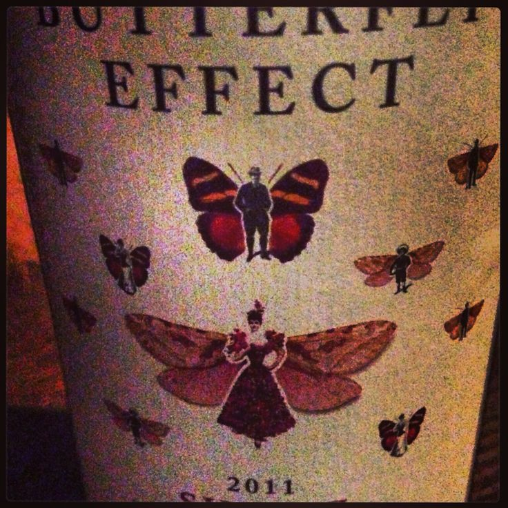 Sam Plunkett butterfly effect Shiraz