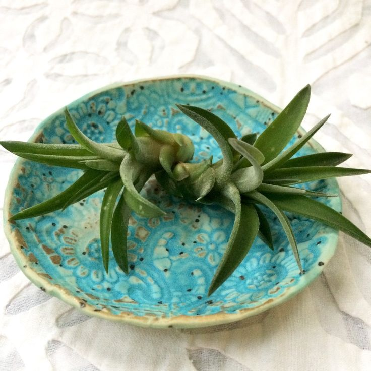 A turquoise ring dish that's an Air Plant holder, too.