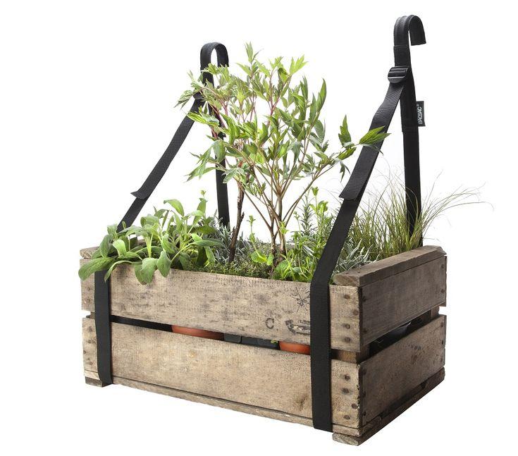 33 best rośliny we wnętrzu images on Pinterest Garden box raised - outdoor küche kaufen