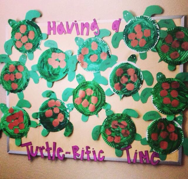 Turtle bulletin board