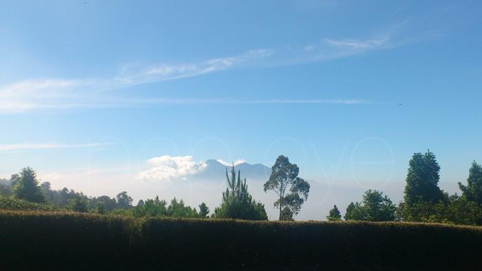 Mt. Salak, taken from the Javanas Spa, Cidahu