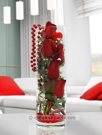İçinizde gizli kalan derin duygular, bırakın saklandıkları yerden çıksın, sevdiğinizin kulağına, söylemek istediğiniz en derin aşkınızı fısıldasın. Cam vazodaki bu kırmızı güller, sakladığınız aşkınızı sevdiğinize söylemek için bekliyor.  http://www.ciceksepeti.com/silindir-vazoda-5-kirmizi-gul