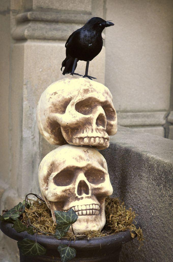 skull topiary gothic halloween decorationshalloween - Halloween Skull Decorations