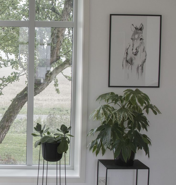 Elise Stalder art print