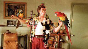 1994 Ace Ventura Pet Detective
