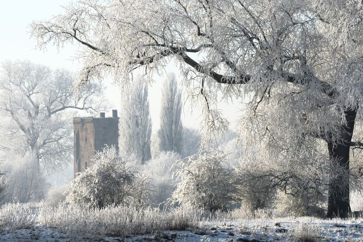 Nijenbeek Castle, Netherlands (by Freerk Zandberg)