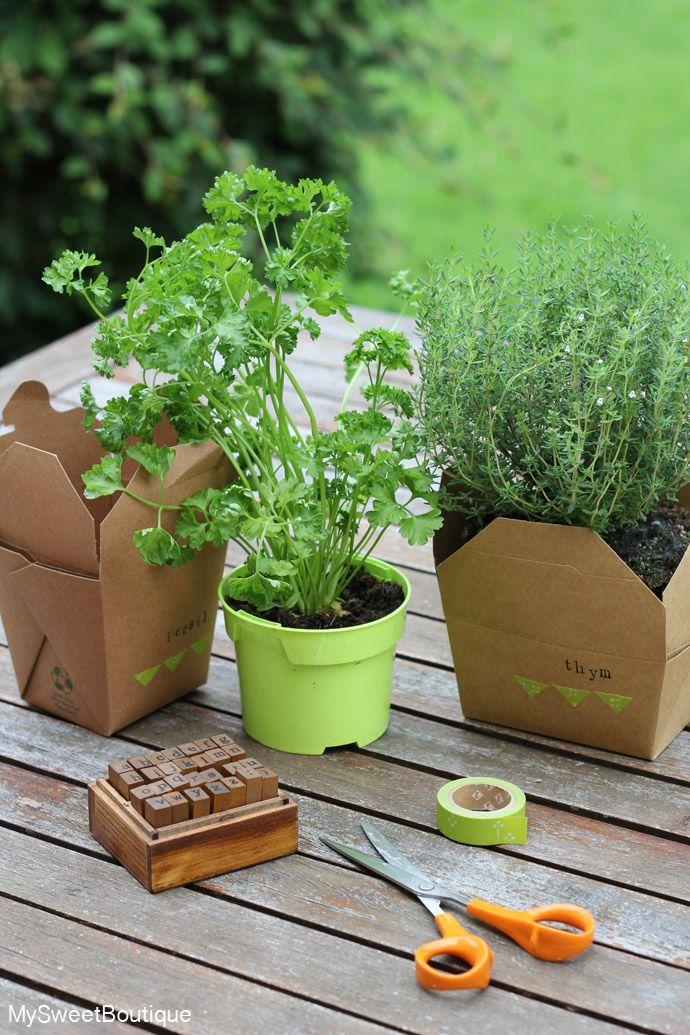 ... retenue de berge patager jardin aromatique jardin aménagement pin 7