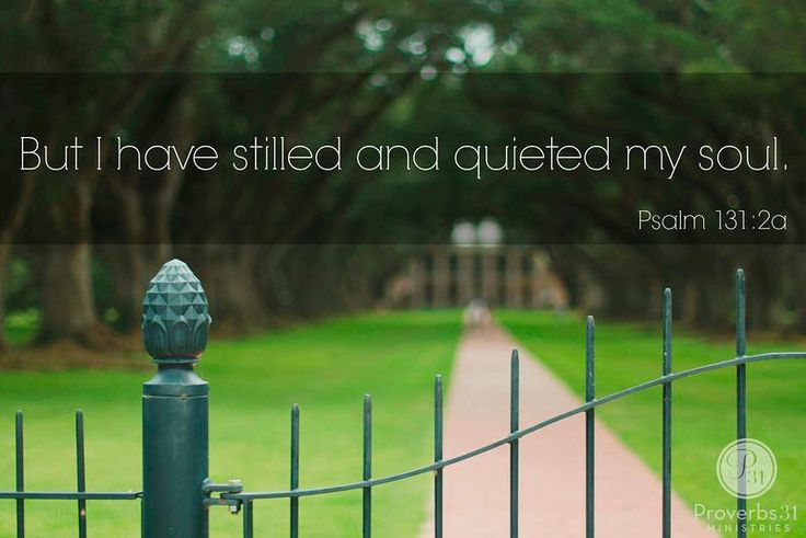 """But I have stilled and quieted my soul."" - Psalm 131:2a"