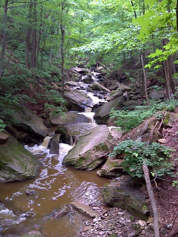 Grindstone Creek - http://hamiltonwaterfalls.geotrail.ca/activities/55