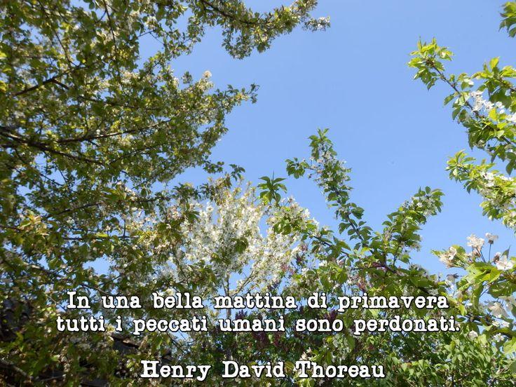 In una bella mattina di primavera, tutti i peccati umani sono perdonati. Henry David Thoreau, Walden