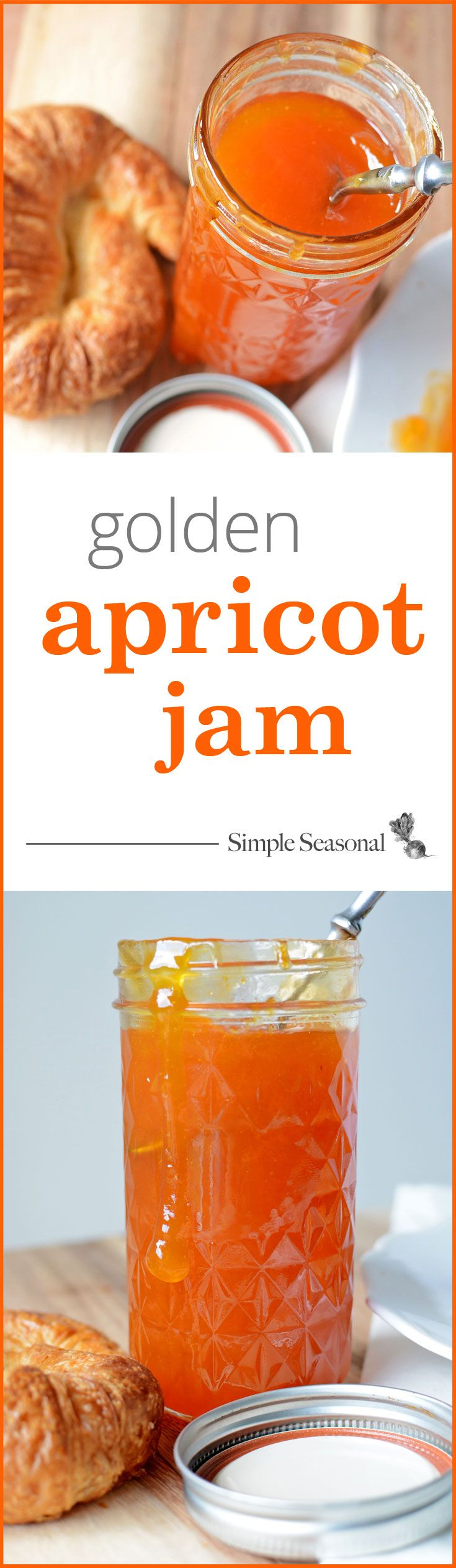 Golden Apricot Jam - a complete canning recipe for making jam with fresh apricots from your local orchard or farmers market. This sweet, sticky jam will be a welcome treat on a cold winter day when you're dreaming for the warmth of spring! Click through to see complete canning instructions, tips, and photos at SimpleSeasonal.com.