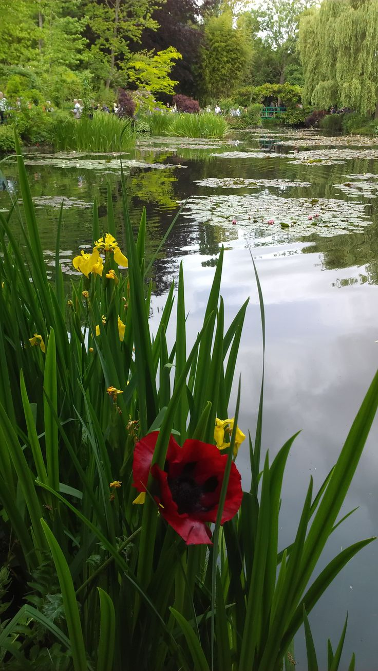 Monet's Garden, Giverny, France.