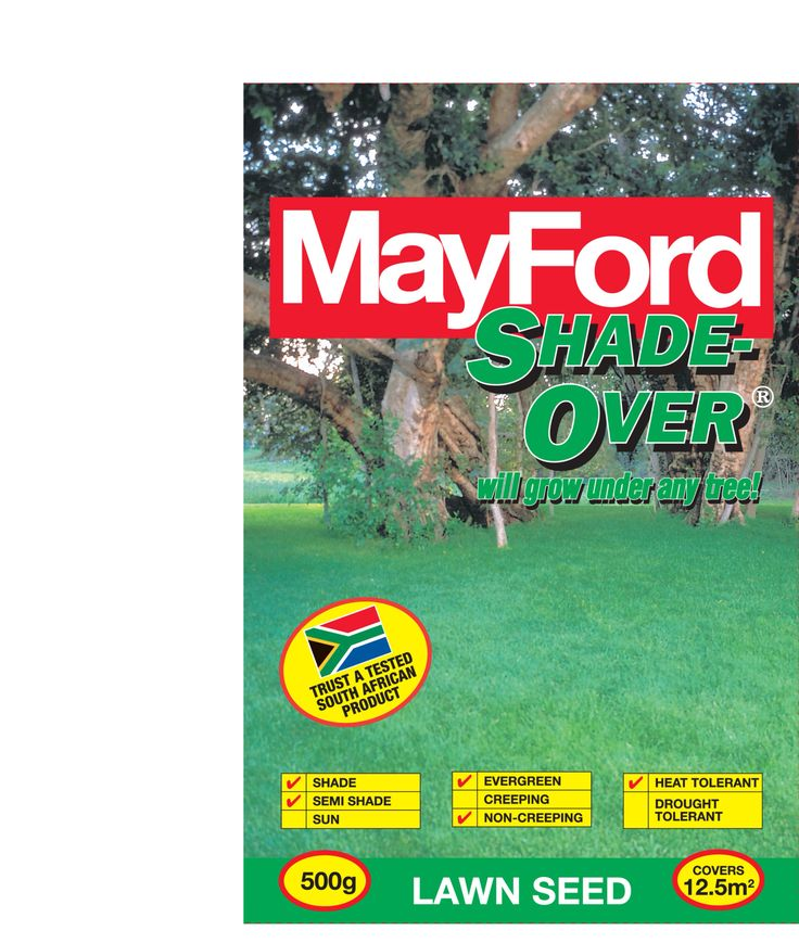 Lawnseeds Shade Over by MayFord