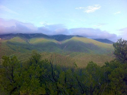 35.49 Acres Timber Land, Mountain, Land for Sale by Howard in Fremont County, Colorado 81233 - LANDFLIP.com