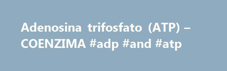 Adenosina trifosfato (ATP) – COENZIMA #adp #and #atp http://kansas-city.remmont.com/adenosina-trifosfato-atp-coenzima-adp-and-atp/  # COENZIMA .COM La adenosina trifosfato (abreviado ATP, y también llamada adenosín-5′-trifosfato o trifosfato de adenosina) es una molécula utilizada por todos los organismos vivos para proporcionar energía en las reacciones químicas. También es el precursor de una serie de coenzimas esenciales como el NAD+ o la coenzima A. El ATP es uno de los cuatro monómeros…