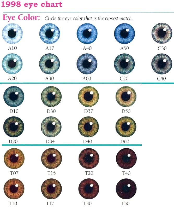 Eye Color Chart Eyes EyeColors