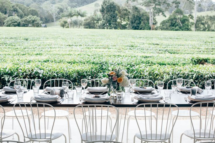 camellia-weddings-madura-tea-estates-northern-nsw-wedding-venue-casuarina-weddings063.jpg