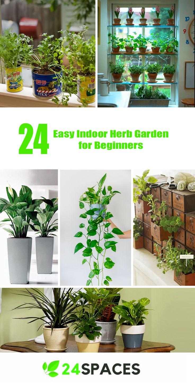 24 Easy Indoor Herb Garden For Beginners Kräutergarten 400 x 300