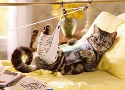 You'll pounce back in no time! Get well soon
