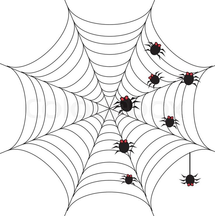 creepy spiders coloring pages - photo#30